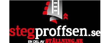 Kända Köp brandstege/utrymningsstege online | Stegproffsen TZ-19